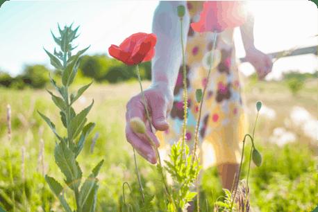 Image: Allergies & Pollen