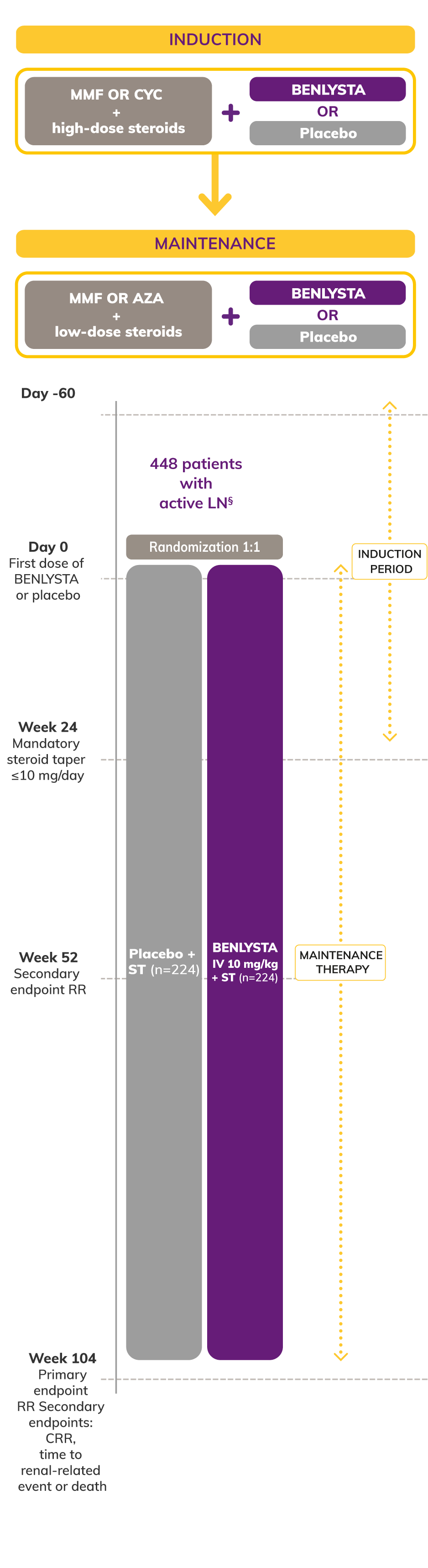 Chart: BLISS LN Study Design