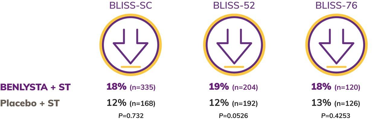 Adult SLE Chart
