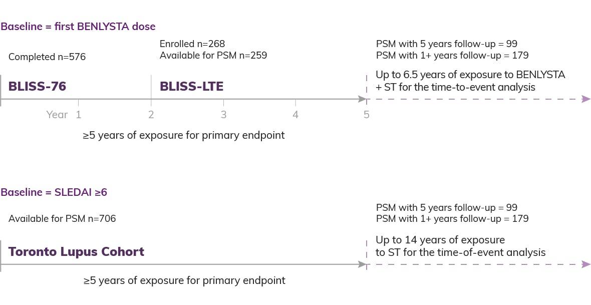 BLISS Study Timeline