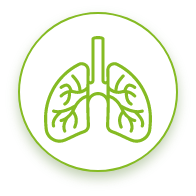Icon: Protection from Severe Asthma Attacks
