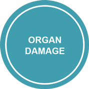 Icon: Organ Damage leads to the risk of additional damage and increased mortality